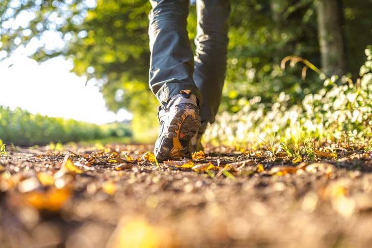 Пять причин, почему пешая прогулка лучше спортзала | Комментарии Украина