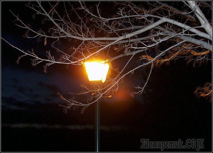 Ночь (Стих)