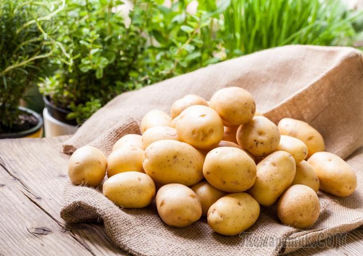 Сохранить картофель до весны Из опыта