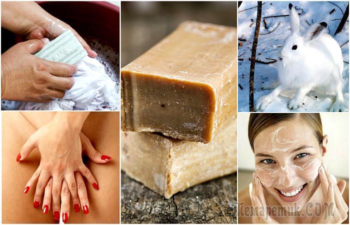 20 способов использования хозяйственного мыла, которые помогут сэкономить бюджет