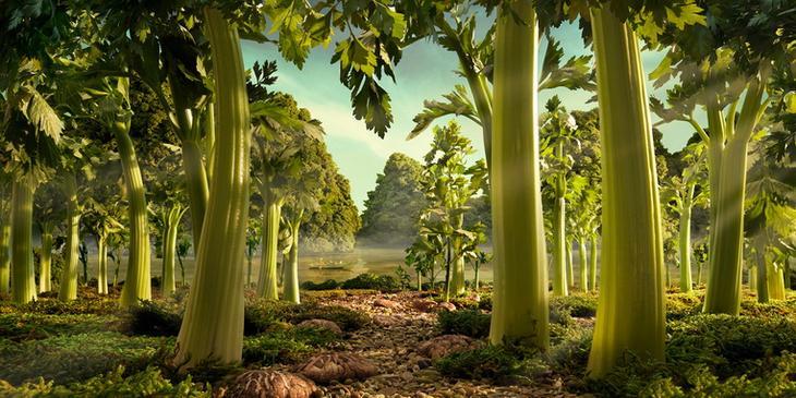 Дождевой лес из сельдерея