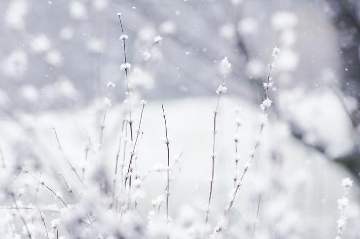 Сонник толкование снов белый снег