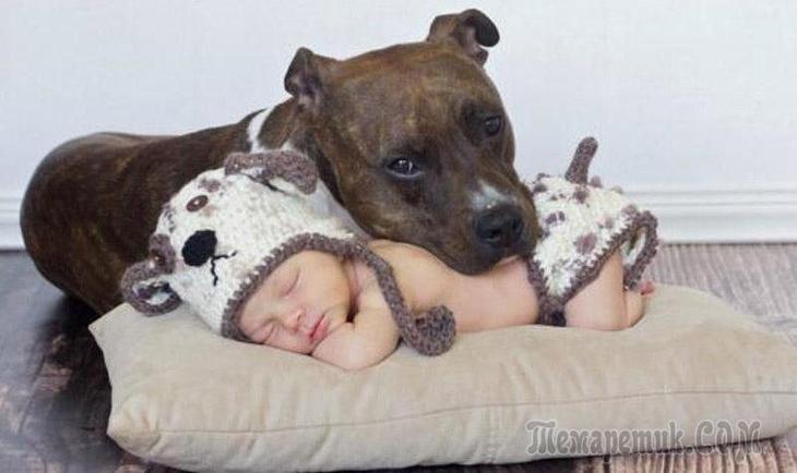 Так выглядит счастье: дети и животные