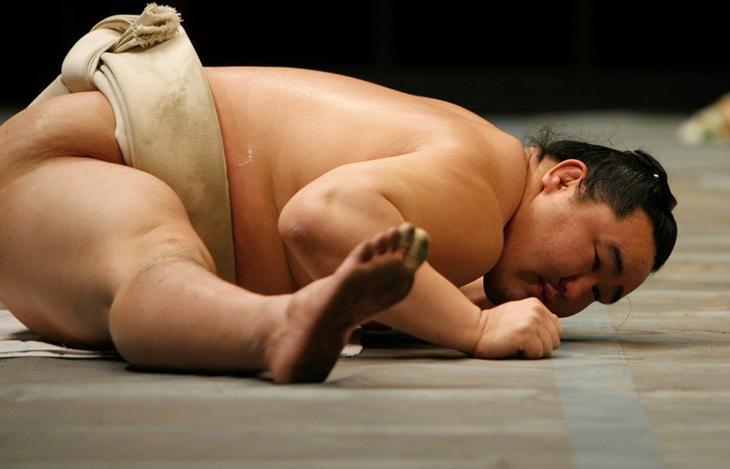 Самые интересные факты о борьбе сумо сумо, факты, япония