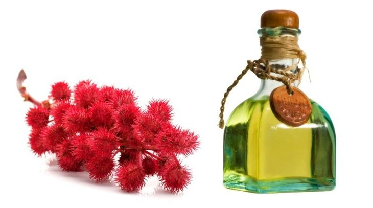 Касторовое масло, или масло клещевины