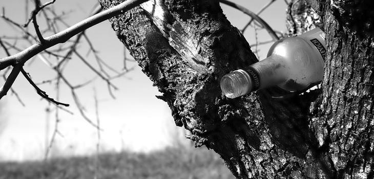 Палёную водку найдет «Алкота». Разработано приложение для борьбы с «левой» алкоторговлей