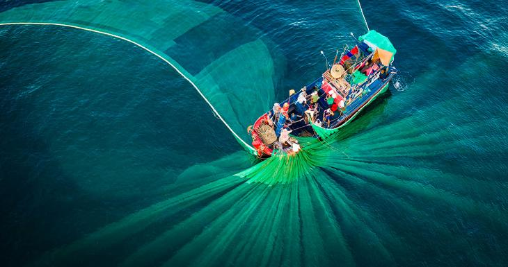 43 место конкурса и рыбаки с сетями