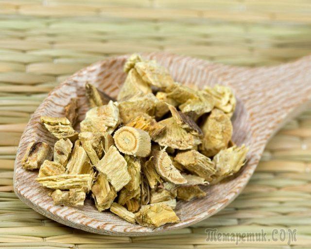 Корень солодки польза и вред, применение в народной медицине -Траварт