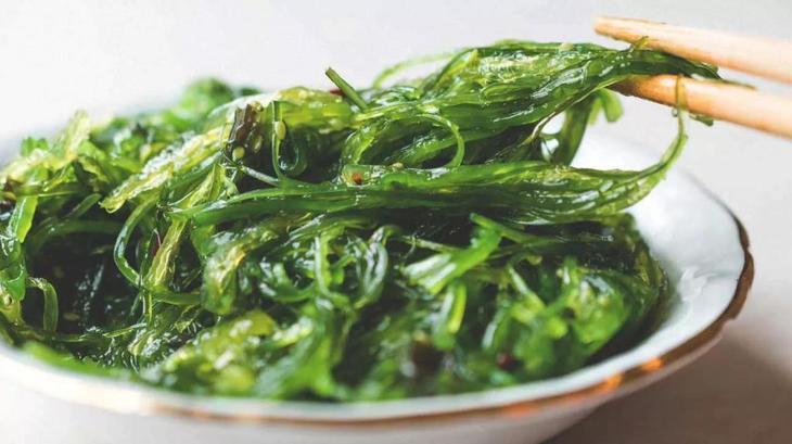 водоросли ламинария