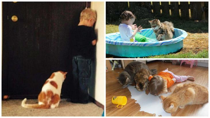 Вот почему каждому ребёнку нужен кот дети, животные, интерсеное, кошки