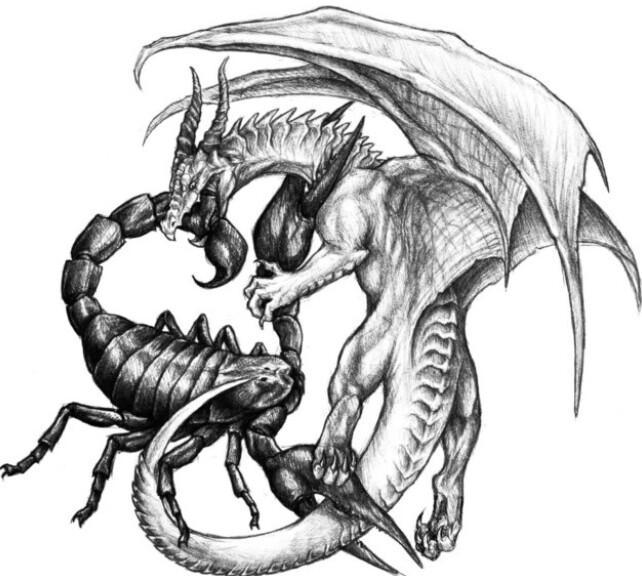 Мужчина Скорпион - Дракон - характеристика, совместимость
