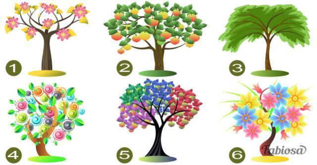 Тест: Выберите дерево и узнайте, какие черты характера в вас доминируют!