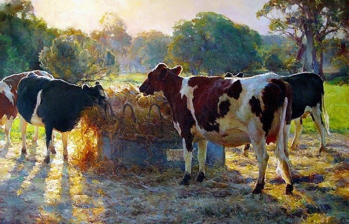 Солнечная живопись Джона Маккартина