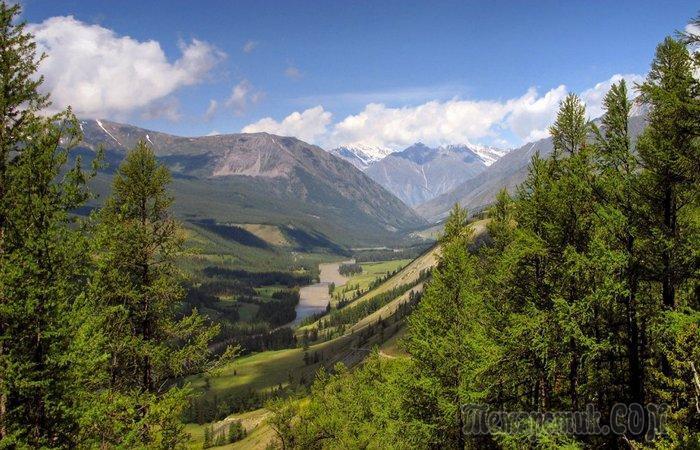 Загадочные находки, которые были сделаны в Сибири и поставили учёных в тупик