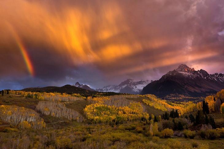 Восхищаемся дикой природой - 31 фотография с конкурса «Wilderness Forever»