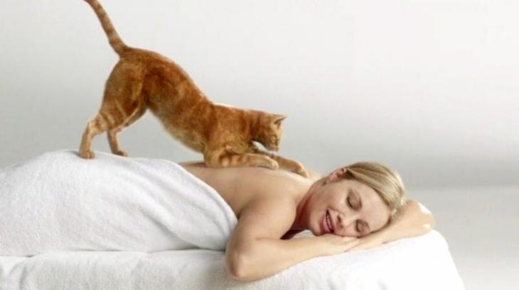Знаете ли вы, почему кошка топчет вас лапками