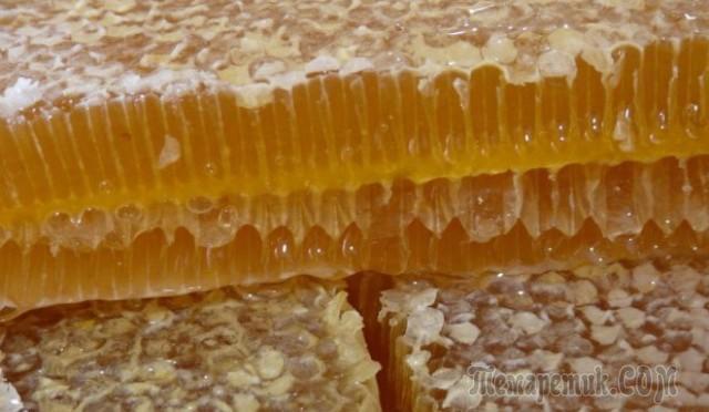 Забрус пчелиный польза