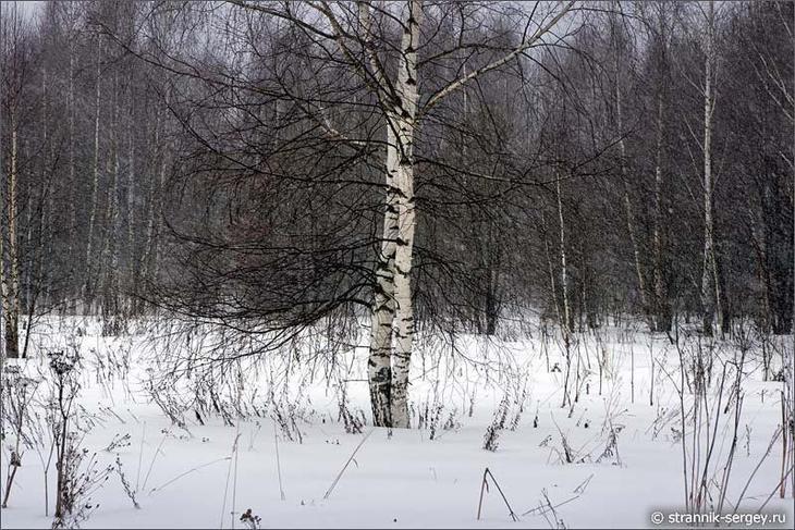 Когда падает чистый и белый снег