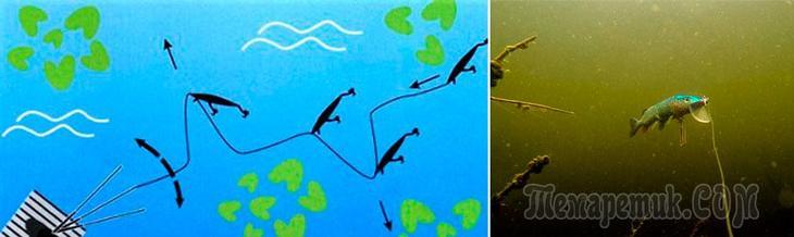 Проводка воблера на щуку: способы и приемы анимации