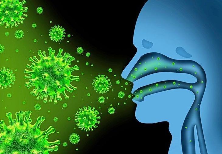 Список трав с мощным антивирусным эффектом