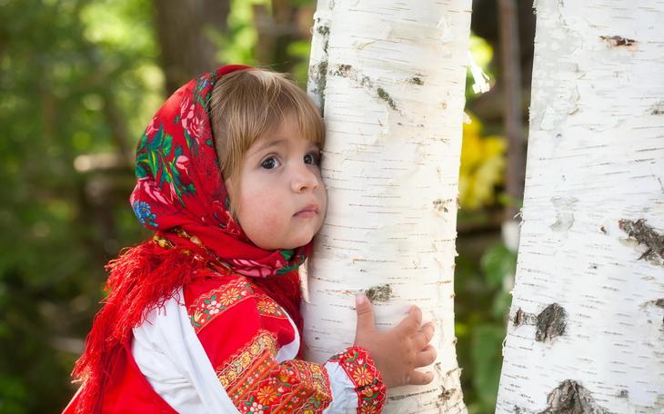 . Целебная сила дерева. Как деревья нас лечат. Фото с сайта NewPix.ru