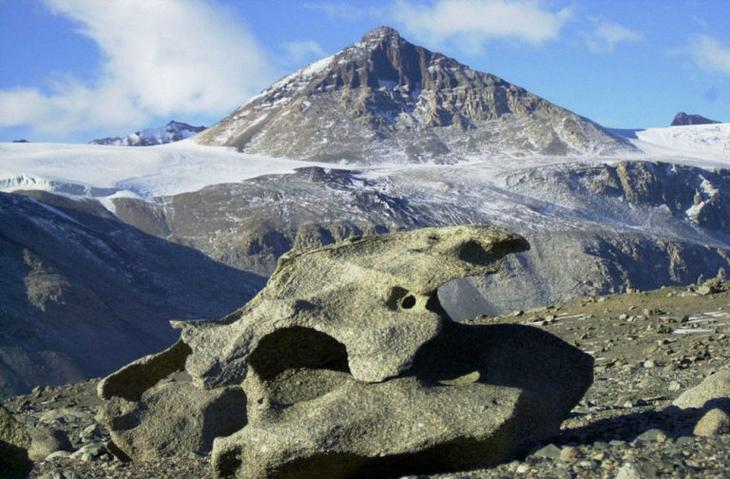 В Антарктиде найдена таинственная дорога