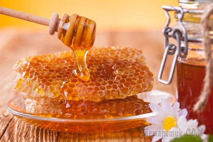 Мед в сотах польза и вред можно