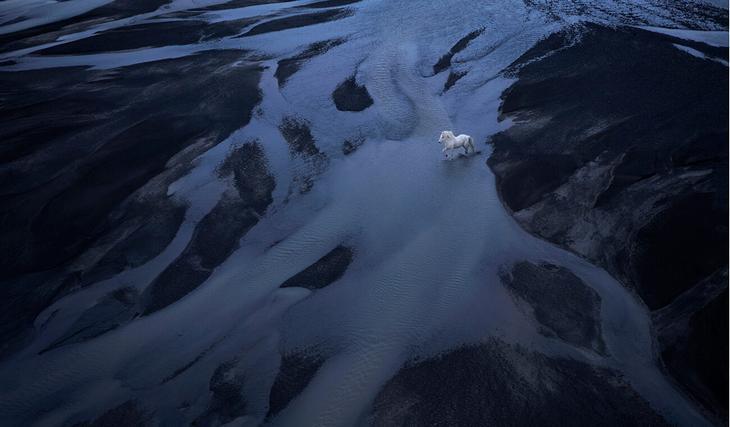 loshadi-Islandii-fotograf-Dryu-Doggett 6