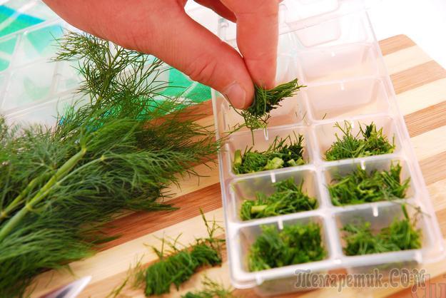 Как заготовить укроп и петрушку на зиму, сохранив их аромат