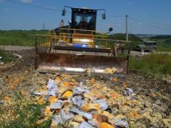 Пермяков возмутило уничтожение импортной еды. «Детские дома обрадовались больше всех»