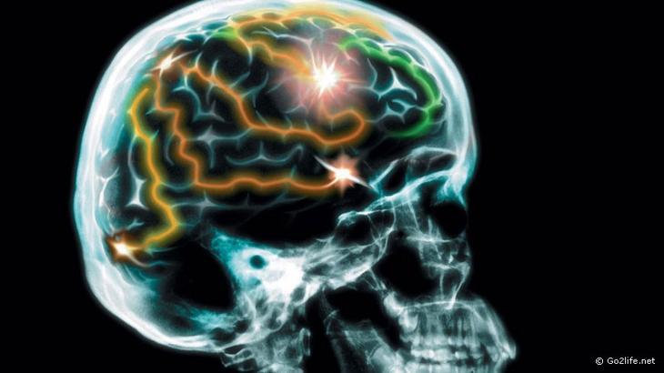 Короткий тест на признаки болезни Альцгеймера болезнь, тест