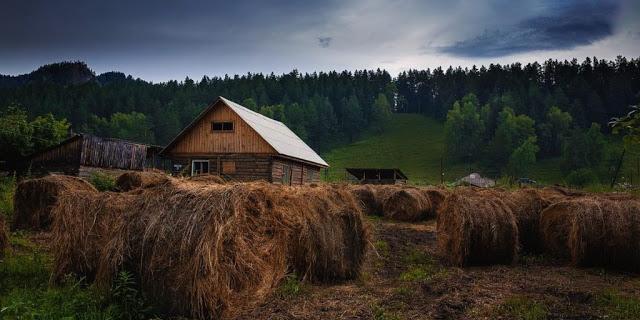 Земельный участок: понятие и основные характеристики