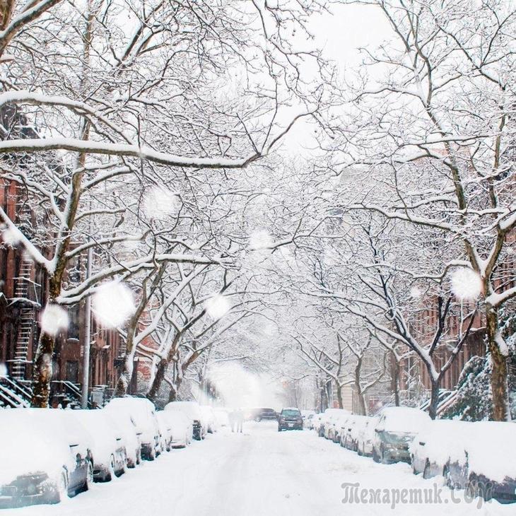 Город мой укрылся снегом (Стих)