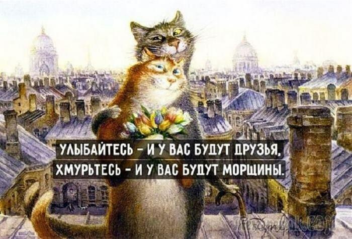 Очаровательные и милые картинки с житейской мудростью