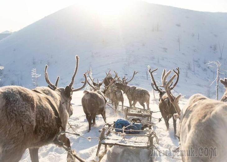 25 фото из ледяной Якутии, где люди настолько суровые, что выживают при -50°C