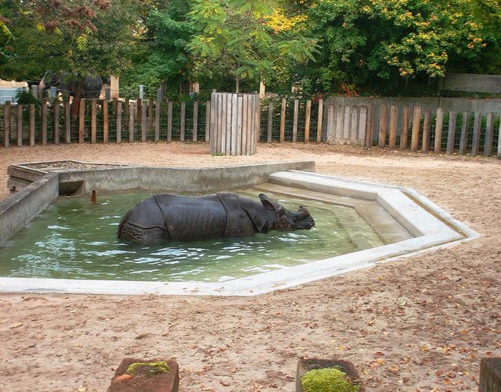 Зоологический и ботанический сад Вильгельма