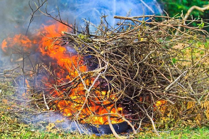 Как правильно сжигать мусор на даче закон