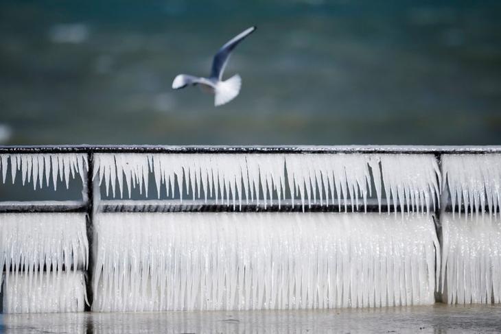 красивые зимние фото loverme