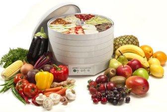 Какая температура в сушилке для овощей