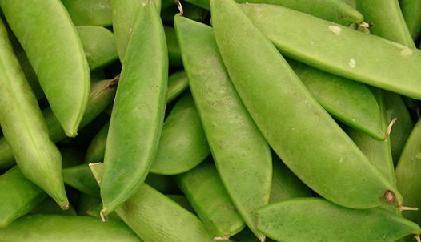 Зеленый горошек свежий польза и вред